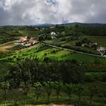 Green Fields thumbnail