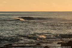 1 29 Poipu Beach 2018-01-29 034-LR (jamesabbott1963) Tags: canon70d kauaipoipu koloa hawaii unitedstates us