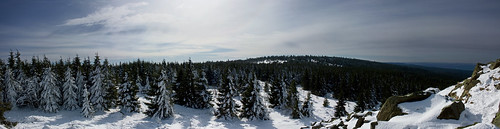 Wolfswarte at –12 °C