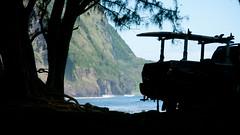 Waipio (80) (BoyUtot) Tags: waipiovalley waipiofalls waimea surfing hiking trekking dronephotography mavic panasonicgh1 hawaii bigisland lumix 100300mm travel nature landscape seascape honokaa ramesesmendoza