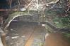 Ψίνθος (Psinthos.Net) Tags: χαλαζόπτωση χαλάζι καταιγίδα ψίνθοσ ρόδοσ hail hailstorm storm psinthos rhodes rhodos rodos μπόρα νυχτερινήκαταιγίδα nightstorm winter january ιανουάριοσ γενάρησ χειμώνασ νύχτα night βράδυ βράδυχειμώνα χειμωνιάτικοβράδυ νύχταχειμώνα χειμωνιάτικηνύχτα βρύση βρύσηψίνθοσ vrisi vrisiarea vrisipsinthos rain βροχή νερό water torrentarea torrent χείμαρροσ καταρράχτησ καταρράχτησψίνθου waterfall πλάκα steps stair σκάλα σκαλιά χόρτα greens groove αυλάκι σχολείο school playground παιδικήχαρά δημοτικόσχολείο basicschool psinthosschool σχολείοψίνθου σχολείοψίνθοσ λειχήνεσ πλάτανοσ lichens planetree