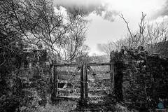 No access (pm69photography.uk) Tags: devon dartmoor moody monochrome meldon meldonreservoir westokementriver westcountry bw blackandwhite gate padlocked a7rii aurorahdr2018 atmospheric atmosphere pm69photographyuk