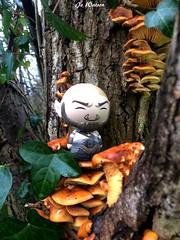 Ogrim (JoeyDee83) Tags: funko dorbz vinyl toy geek action figure wow world of warcraft gamer hearthstone nature mushrooms wildlife tree warrington