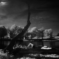 so it seems (old&timer) Tags: background infrared filtereffect composite surreal song4u oldtimer imagery digitalart laszlolocsei