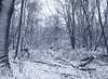 Winterwunderland (Sam.24) Tags: schnee schneelandschaft winter winterlandschaft austria niederösterreich landschaft au