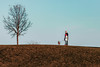 (Rebecca812) Tags: dad daughter family tree dog bostonterrier nature walk winter hill fulllength perspective sky gras outdoors enjoyment candid people animal pet leash baretree branches rebeccanelson rebecca812