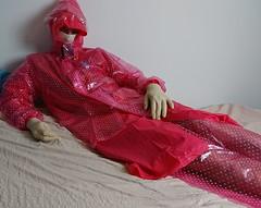 xDSC_0464_cr (coatrPL) Tags: raincoat rainwear rainsuit rainjacket pvc plastic waterproof fetish coat shiny hooded płaszcz pcv przeciwdeszczowe gloves rubber transparent polkadot kaptur