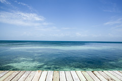 IMG_3671 (CandiceLobo) Tags: belize belizeandreams beach besttimes honeymoon travel tropical adventure happyplace beautiful ocean blue green nature getaway