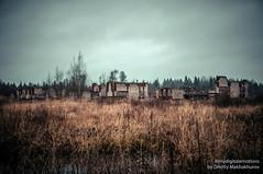 MDD_8671 (Dmitry Mahahurov) Tags: nikon d300 mahahurov tosno