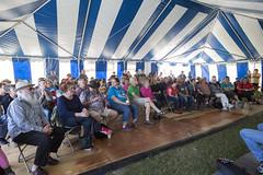 Folk Fest Sat Day sessions (4)