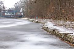 Site des Grands Lacs à Loverval (Olivier_1954) Tags: lac loverval eau gel glace hiver oiseau paysage gerpinnes wallonie belgique be
