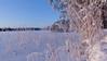 Frozen Lake (Marko@Oulu) Tags: lake snow heinä sunny aurinkoinen luminen suomi finland pudasjärvi frost huurre kuura kevät ranta frozen ice
