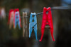 broken.. (ckollias) Tags: bokeh bokehphotography colors line closeup clothesline clothespin day drying focusonforeground hanging laundry nopeople outdoors plastic plasticclothespin stilllife