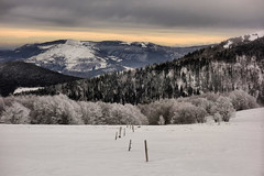 Frost (denismartin) Tags: denismartin frost ice snow hohneck routedescretes france alsace lorraine winter sky cloud tree mountains vosgesmountain vosges vogesen weather wind white hiking skiing labresse