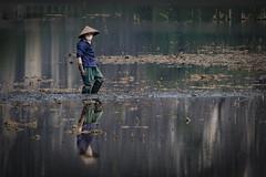 Ninh Binh - Vietnam by Ar-photography.fr -