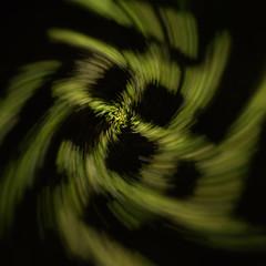 Trippy grass (LivingStone Images) Tags: 2018 8mm analogefexpro fisheye longexposure night nikcollection samyang icm 365the2018edition day26365 26jan18