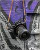 24mm Rokkor (NoJuan) Tags: cameraporn cameraportrait lensadapter lensporn rokkor manualfocuslens sonya7withmanualfocuslens sonya7ii gordystrap minolta minoltarokkorx 24mm
