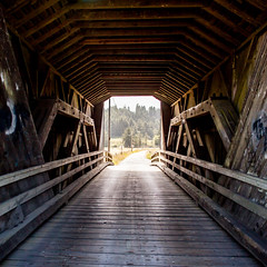 And At Once I Knew I Was Not Magnificant (Thomas Hawk) Tags: america bertasranchcoveredbridge california eureka humboldtcounty northerncalifornia usa unitedstates unitedstatesofamerica bridge coveredbridge fav10 fav25