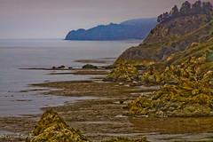 IMG_3898 (CornellBurgessphotography) Tags: seascapes bigsur pointlobos carmelbay california pacificocean montereybay cornellburgess