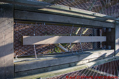 Baumwipfelpfad Binz, Prora (Stefan's Gartenbahn) Tags: baumwipfelweg aussichtsturm adlerhorst rügen prora naturerbe ostseebad binz natur architektur outdoor buchenwald holz himmel wald