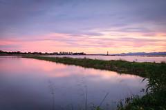 Campos de arroz / Rice fields (victadel90) Tags: campos arroz rice fields parque natural albufera valencia