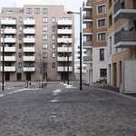 Seestadt_Lobau_20 thumbnail