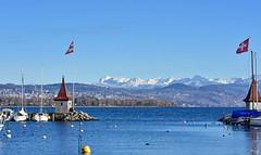 Froid intense sur la région (Diegojack) Tags: morges vaud paysage port tourelles bateaux hiver neige montagnes fabuleuse