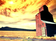 Prairie High Rise (Mr. Happy Face - Peace :)) Tags: art2018 grain elevator vintage scenery landscape albertabound 7dwf painting sketch pastel arcylics drawing trash found textures htt texturetuesdays