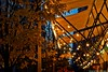 Bright avenue 🍁🍂💡 (Sara Makboul) Tags: bright avenue autumn lightness lights christmaslights warmlight atmosphere cozyplace walking budapest travel tree bluehour street streetphotography nikond5300