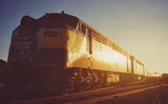 B61 Cup Special (tommyg1994) Tags: west coast railway wcr emd b t x a s n class vline warrnambool geelong b61 b65 t369 x41 s300 s311 s302 b76 a71 pcp bz acz bs brs excursion train australia victoria freight fa pco pcj