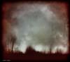 darkness my old friend... (elle Q1) Tags: landscape night low light blur trees sky darkness topaz original digital image post processed llester imges photo art