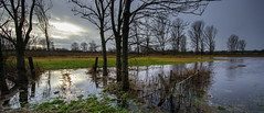 Flooded Meadows (Beppe Rijs) Tags: deutschland germany schleswigholstein schlei wolken wolkendecke landschaft landscape natur nature field feld gras baum tree horizont horizon grün green clouds grau grey farbig colored line linie river fjord fluss winter wiese meadow wasser park