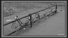 1 of 5 Winter depressing photos in the city (4) (andantheandanthe) Tags: melancholy gloomy gloomyness winter dull dark gloom melancolic sad rain rainy terrible depression depressing glooming dispirit downhearted grey city tedious dusty uninteresting unpleasant cycles bycyles wreck cyclerack rack racks stolen