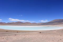 Laguna Tuyajto (► Bee, like bees! <3) Tags: sanpedrodeatacama sanpedro desierto desiertodeatacama chile atacama tuyajto desert