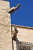 2018 Spanje 0062 Valencia (porochelt) Tags: valencia spanje waterspuwer wasserspeier gargoyle gárgola gargouille spain spanien españa espagne