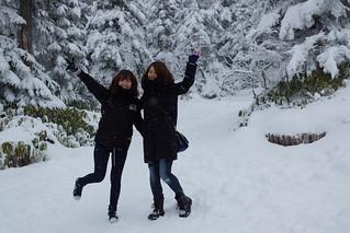 楓‧雪 日本北陸