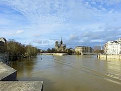 La Seine au pont de la Tournelle (Raymonde Contensous) Tags: paris seineencrue crueparis2018 fleuve rivière ciel nuages paysage nature architecture notredamedeparis