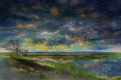 Hellcat Trail Looking West #43 (Rusty Russ) Tags: sunset variations hellcat trail newburyport ma manipulation colorful day digital window flickr country bright happy colour eos scenic america world beach water sky red nature blue white tree green art light sun cloud park landscape summer city yellow people old new photoshop google bing yahoo stumbleupon getty national geographic creative composite hue pinterest blog twitter comons wiki pixel artistic topaz filter on1 sunshine image reddit