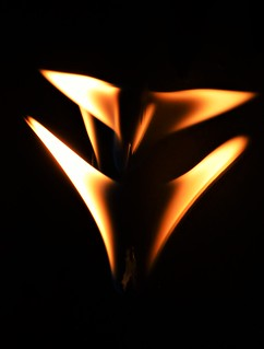 Butterfly Flames..x HMM