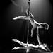 Pole Dancers ¬ 6485