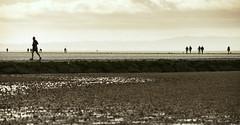 Round the Marine Lake (PentlandPirate of the North) Tags: westkirby wirral merseyside marinelake walk