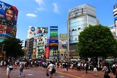 IMG_0390 (ajamassive) Tags: tokyo japan canonsl1 sl1 megacity masscrossing subway yamanoteline travel urbanexploration