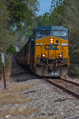 CSX T802 climbs the hill at Brooksville, FL 2-9-18 (tarellsallie) Tags: brooksville florida usa unitedstates america unitedstatesofamerica feburary 2018 trains engine csx unionpacific canadiannational canadianpacific bnsf norfolksouthern coal coaltrain hernando hernandocounty hill nature canon canont3i macbook edit lightroom copyright