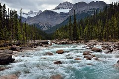 Rapids of the Mistaya River with a Mountain Backdrop (Banff National Park) (thor_mark ) Tags: nikond800e day4 triptoalbertaandbritishcolumbia icefieldsparkway banffnationalpark lookingssw mountsarbach kaufmanpeaks mistayariver river capturenx2edited colorefexpro outside nature landscape mostlycloudy overcast rockymountains canadianrockies mountains mountainsindistance mountainsoffindistance trees evergreens hillsideoftrees hillsideofrocksandboulders boulders largerocks mistayacanyon riverbank alongbanksofmistayariver snowcapped mountainvalley travelingicefieldsparkway travelingtheicefieldsparkway walktomistayacanyon centralmainranges waputikmountains northwaputikmountains christianpeak hanspeak mistayacanyonarea project365 portfolio alberta canada absolutelystunningscapes