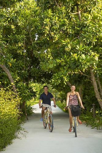 Cycling through the Gardens