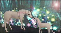 Snapshot_037 (ReenaStark) Tags: secondlife sl avatar avatars avi avis virtualreality valentine valentinesday couple couples man men guy guys women woman lady ladies girl girls love holiday holidays unicorn unicorns horse horses