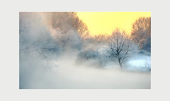 a frosty morning (Thomas Rausch (!)) Tags: winterbeauty nebel fog sunrise winter erlangen rednitz regnitz raureif wiesengrund neujahr schlampe