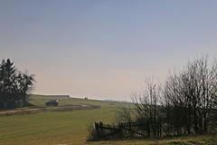 _MG_5086a - 18.02.2018 (hippo1107) Tags: landschaft februar 2018 winter farben braun beige khaki blau hügel muster bäume felder baum spaziergang canoneos70d canon eos 70d