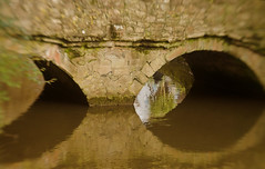 ancient bridge 17/100x 2018 (sure2talk) Tags: ancientbridge bridge reflection christchurch water millstream nikond7000 lensbaby lensbabycomposerpro lensbabylove sweet50optic 100xthe2018edition 100x2018 image17100 100shotswithalensbaby 17100x2018 explore