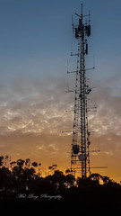 Communication tower ( sunrise ) (Malcom Lang) Tags: tv radio telephone tower communication cables metal steel rod rods ladder dish dishes trees shrub sky cloud sunrise early morning dawn samsung phone outdoor outside outdoors portlincoln southaustralia southern south southernaustralia southerneyrepeninsula australia australian aussie